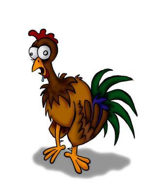 Los pollos engordados con hormonas son la causa de la homosexualidad!!!
